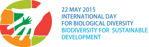 idb-2015-logo-en-web